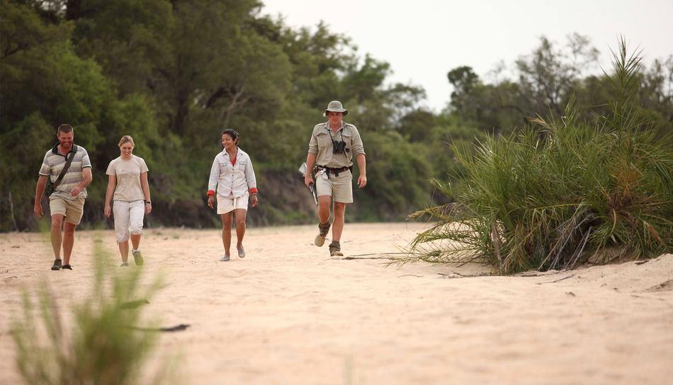 Ngala Walking Safari