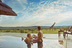 Swimming Pool at Madikwe